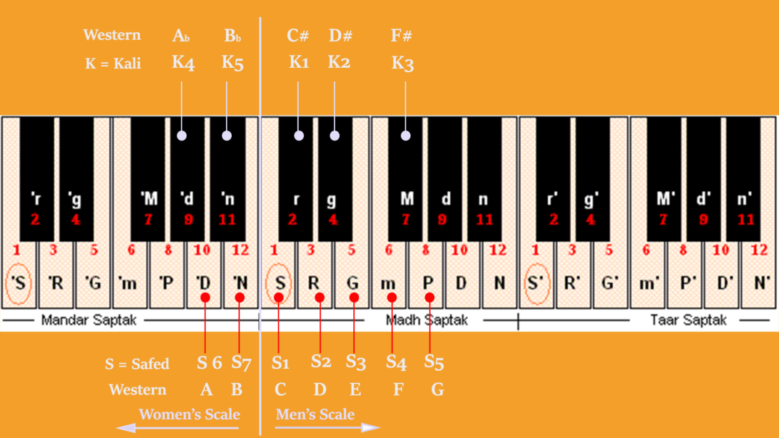 Image depicting different vocal scales on Harmonium/Keyboard